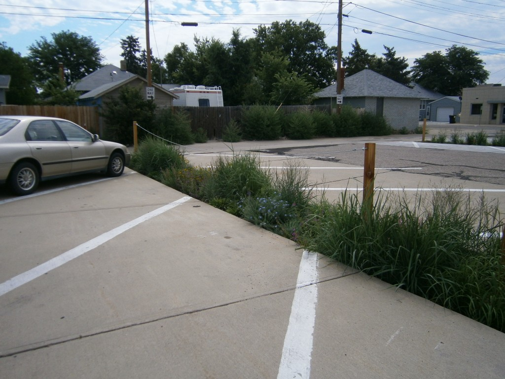 LID Landscaping, parking lot planting, stormwater capture