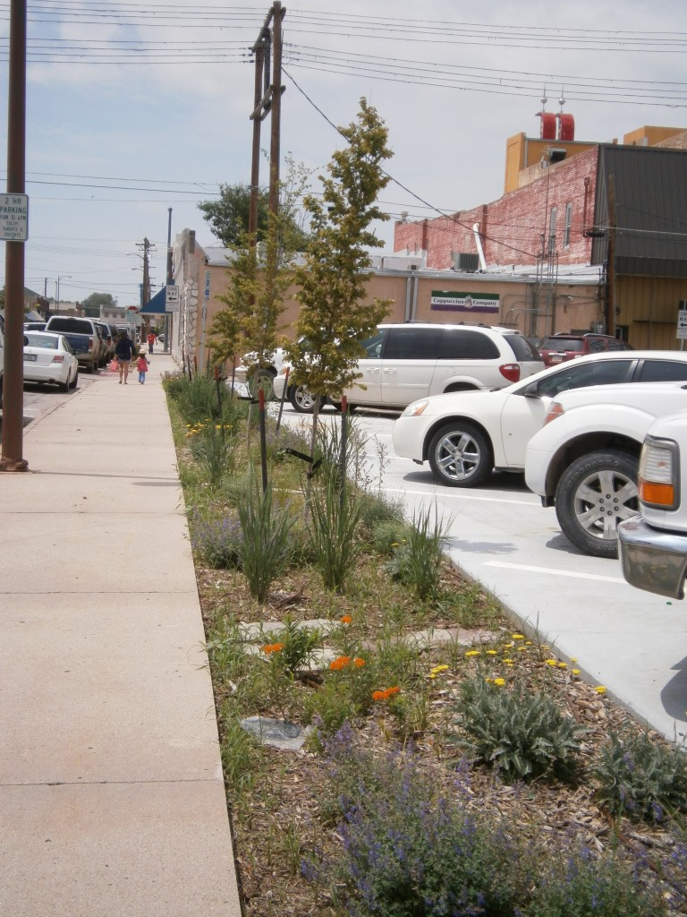 street trees, urban landscaping, parking lot landscaping, downtown landscaping