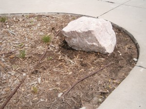 Strategically placed hardscape helps keep traffic out of landscape beds